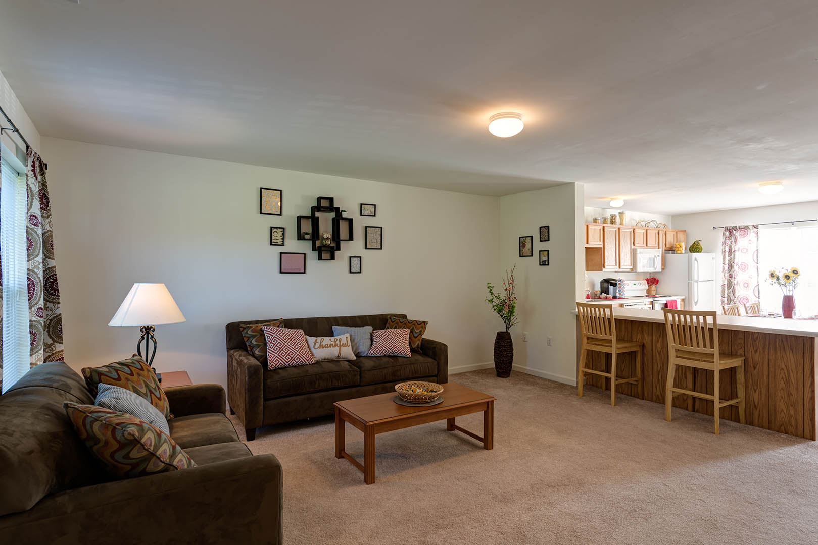 Copper-Beech-Townhomes-Oakwood-State-College-PA-Living-Room-Unilodgers