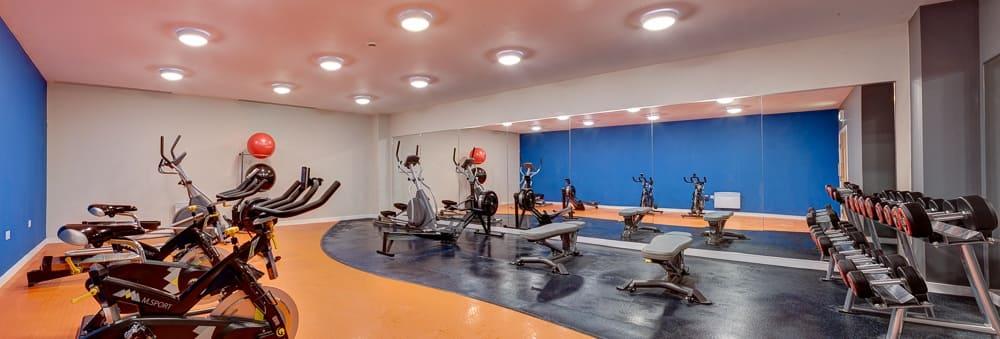 Burgess-House-Newcastle-Gym-2-Unilodgers