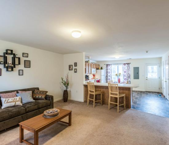 Copper-Beech-Townhomes-Oak-Hill-State-College-PA-Living-Room-Unilodgers
