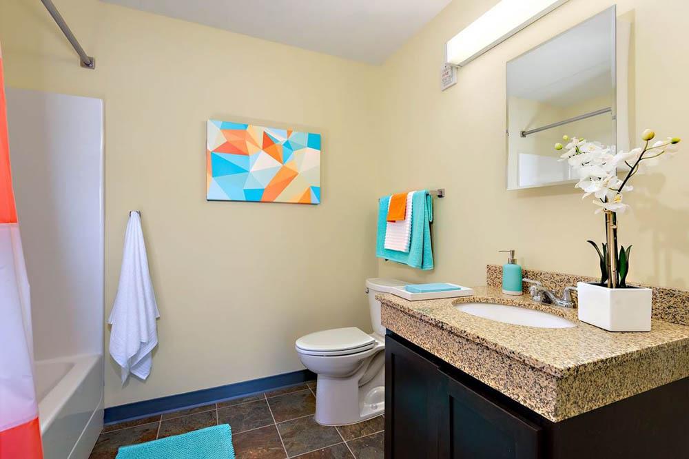 University-Village-Apartments-On-Colvin-Syracuse-NY-Bathroom-Unilodgers