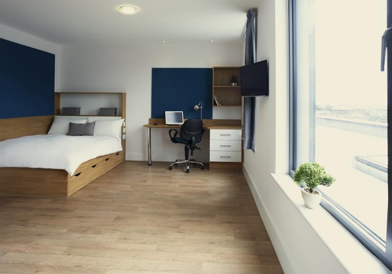 iQ-Abacus-House-Brighton-Gold-Studio-2-Unilodgers